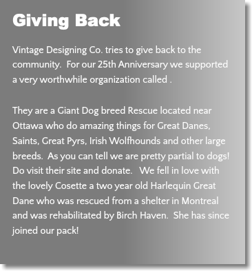 Giving Back Vintage Designing Co. tries to give back to the community. For our 25th Anniversary we supported a very worthwhile organization called . They are a Giant Dog breed Rescue located near Ottawa who do amazing things for Great Danes, Saints, Great Pyrs, Irish Wolfhounds and other large breeds. As you can tell we are pretty partial to dogs! Do visit their site and donate. We fell in love with the lovely Cosette a two year old Harlequin Great Dane who was rescued from a shelter in Montreal and was rehabilitated by Birch Haven. She has since joined our pack!